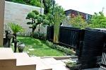 Contoh Desain Landscape 7